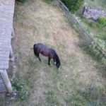 camping gite equestre blaches vernoux valence